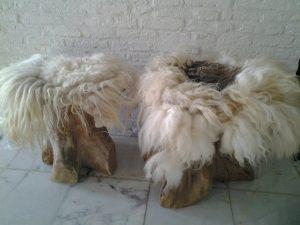 Kleine geviltte schapenvachtjes
