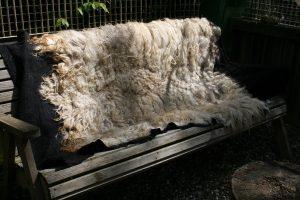 Zwarte basis onder, wittte schapenvacht boven