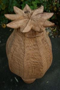 papaver hout